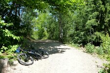 mountain bike montiggler wald
