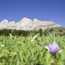 Foto: © Eggental Tourismus, Alex Filz