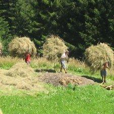 Foto: © Südtiroler Bauernjugend