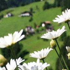 © Tourismusverein Passeiertal