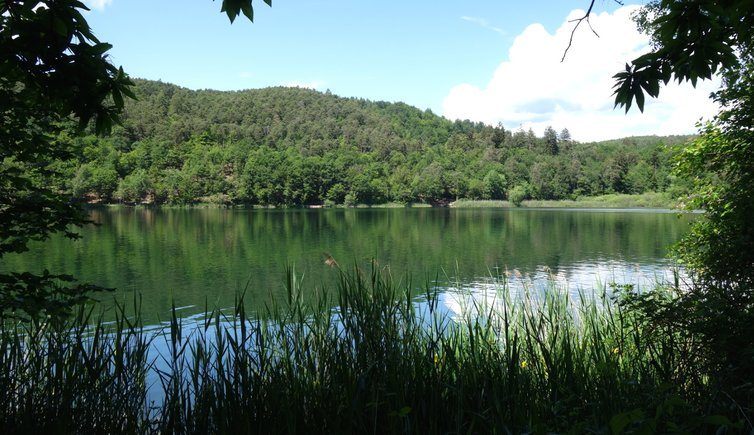 Hiking camp - Monticolo lake